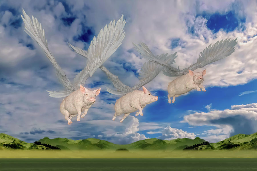 Pig Digital Art - When Pigs Fly by Betsy Knapp