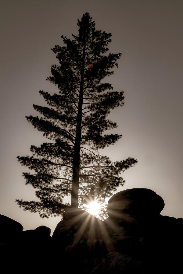 When the Sun Goes Down by Marzena Grabczynska Lorenc