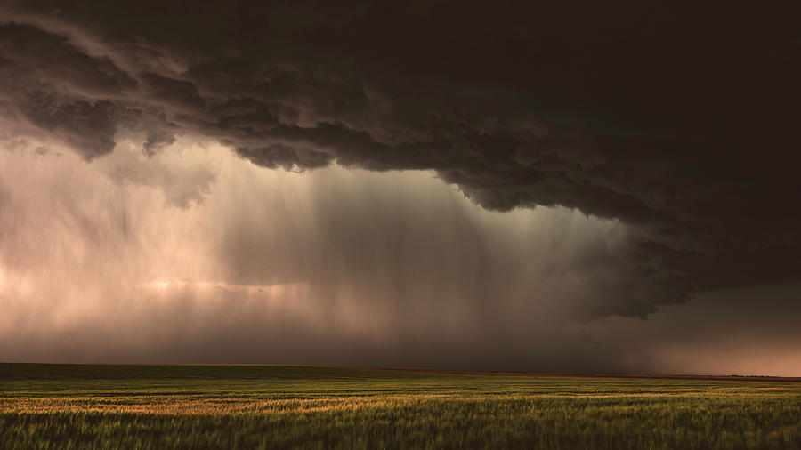 When Torrential Rains Fall by Brian Gustafson