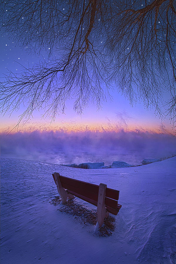 When You Wish Upon A Star by Phil Koch