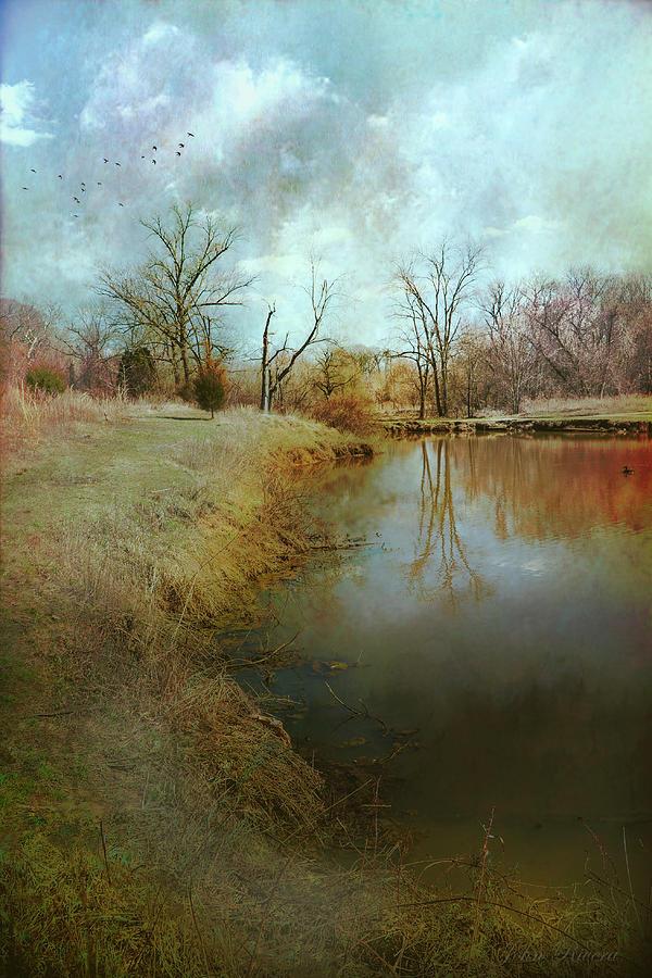 Where Poets Dream by John Rivera