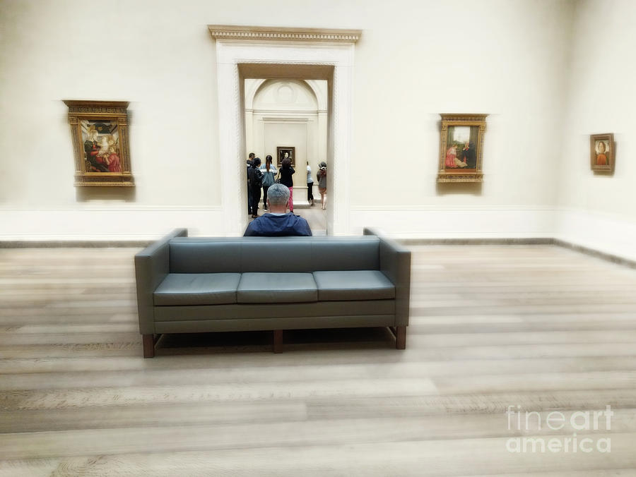 Gallery Photograph - Art That Attracts  by Steven Digman