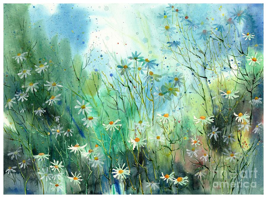 Camomille Painting - Where To Find You by Suzann Sines