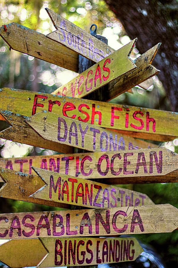 Which Way To Go For Fresh Fish Photograph