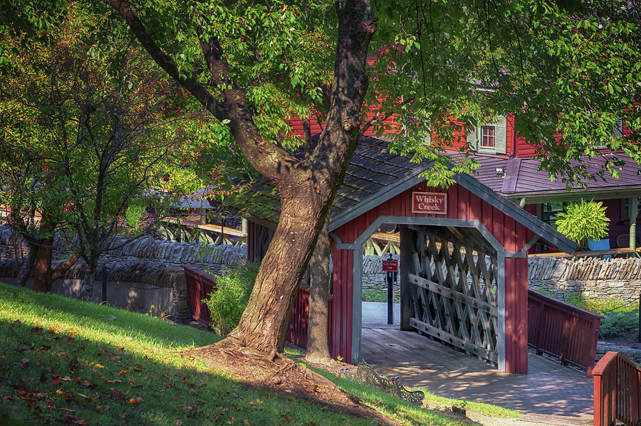 Whisky Creek Covered Bridge by Susan Rissi Tregoning