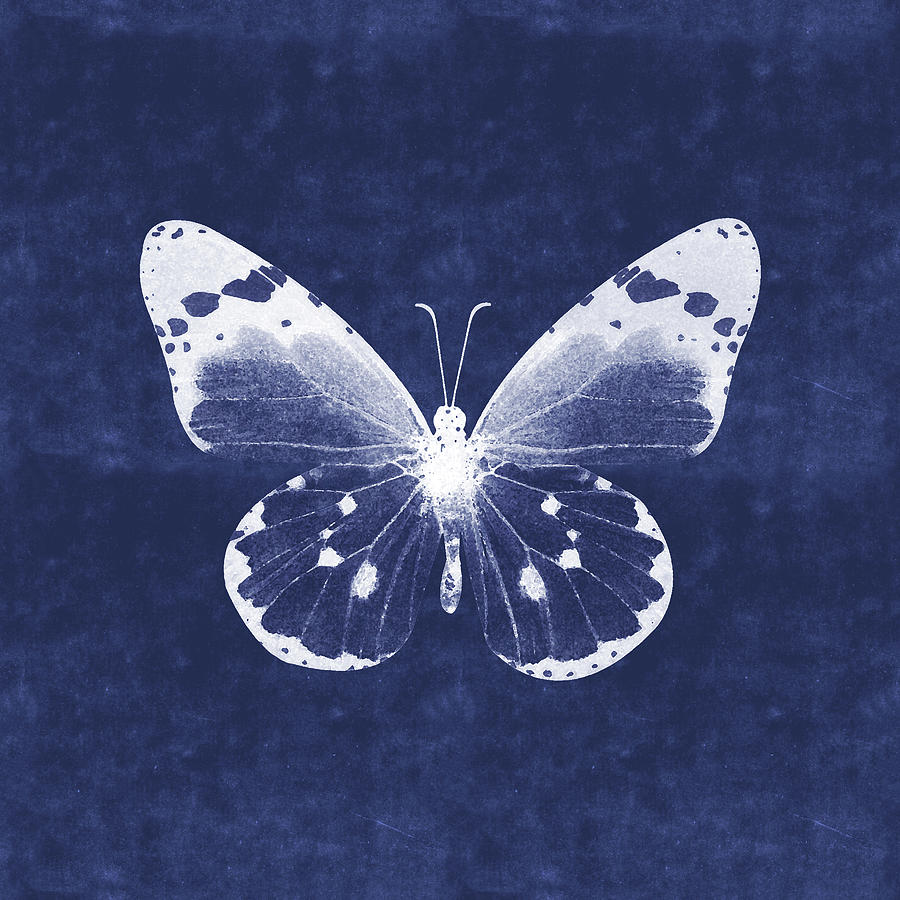 Butterfly Mixed Media - White and Indigo Butterfly 1- Art by Linda Woods by Linda Woods