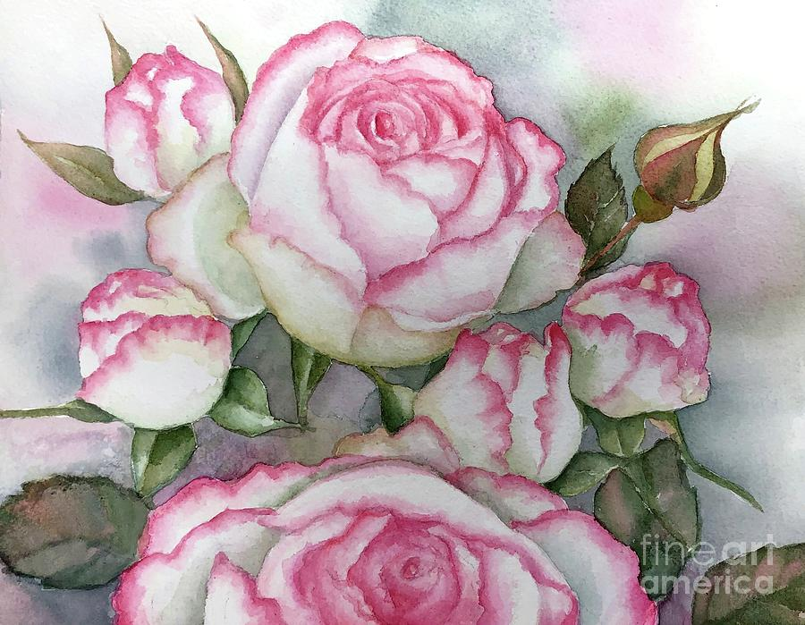 White and pink rose by Inese Poga