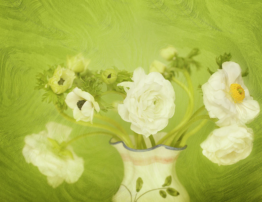 White Anemonies And Ranunculus Digital Art by Susangaryphotography