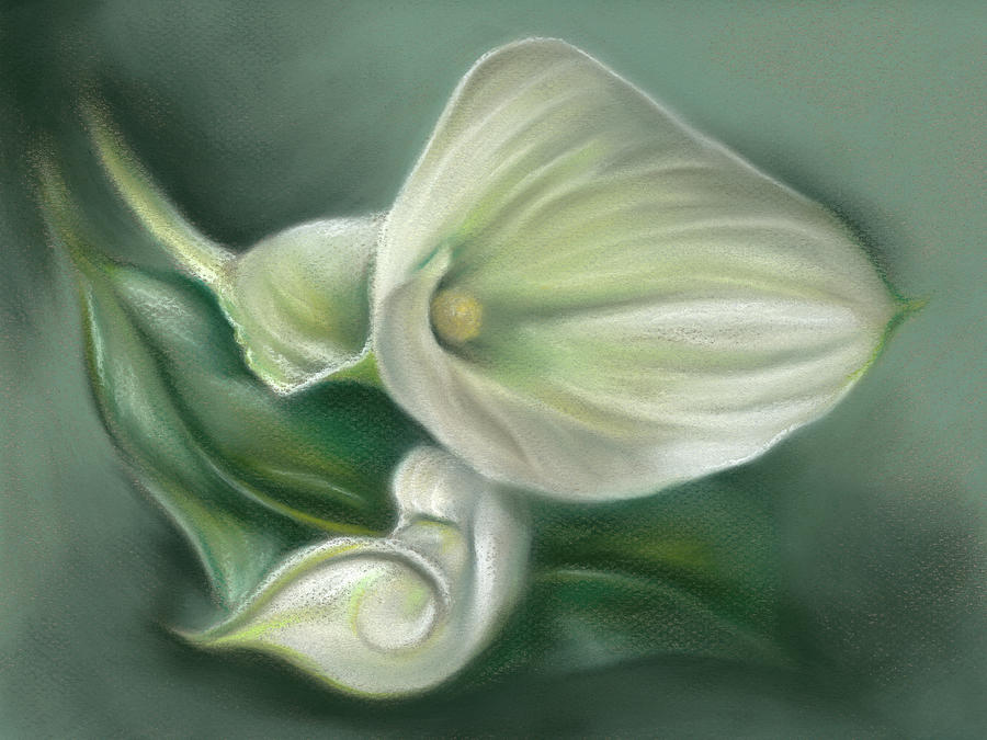 White Callas with Leaf by MM Anderson