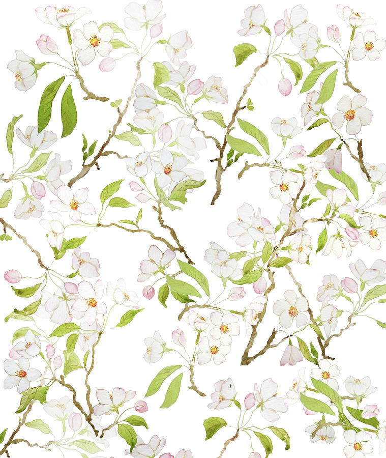 white cherry blossom pattern by Color Color