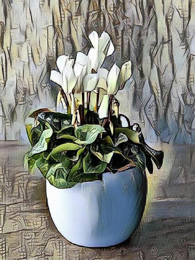White Cyclamen by Portraits By NC