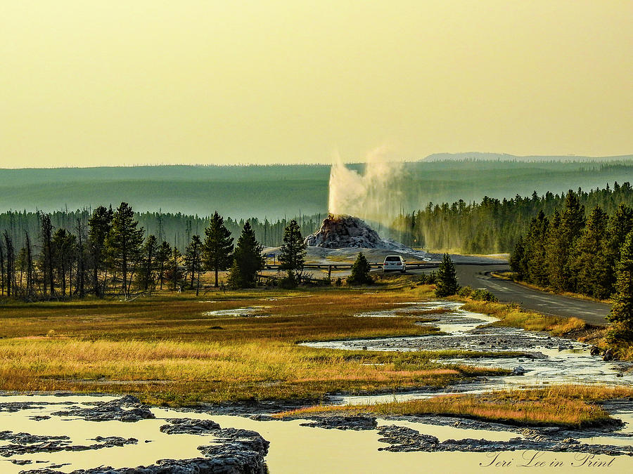 White Dome Geyser by Teri Lee