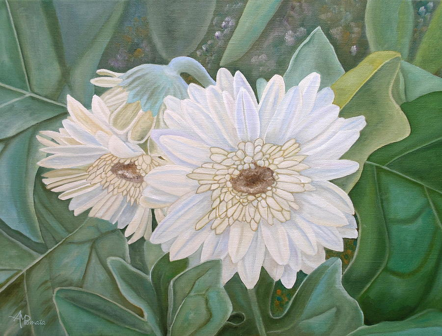 White Gerbera by Angeles M Pomata
