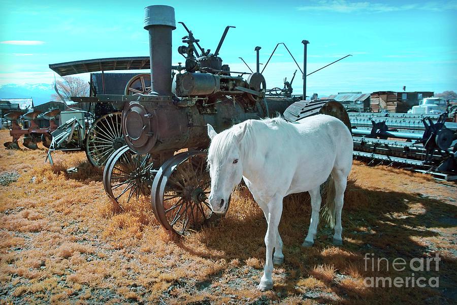 White Horse Iron Horse by Martin Konopacki