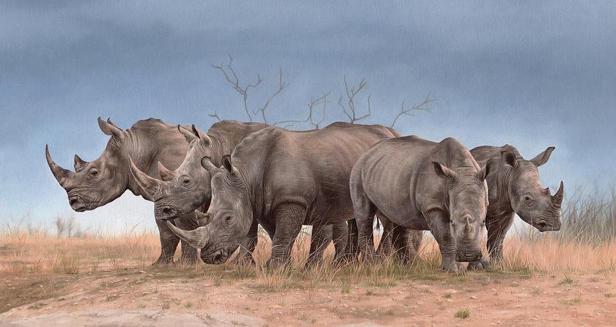 White Rhinos Panoramic by Rachel Stribbling