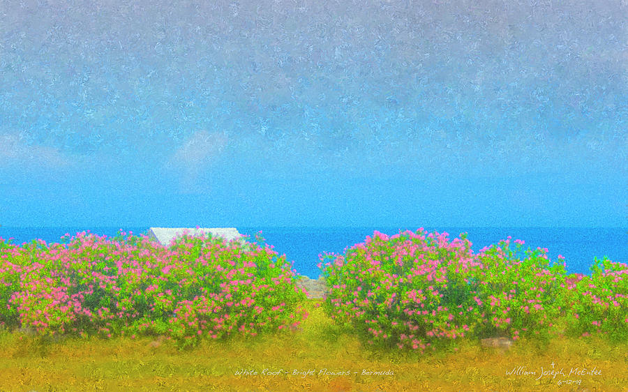 White Roof - Bright Flowers - Bermuda by Bill McEntee
