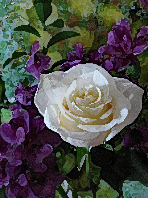 White Rose by Corinne Carroll