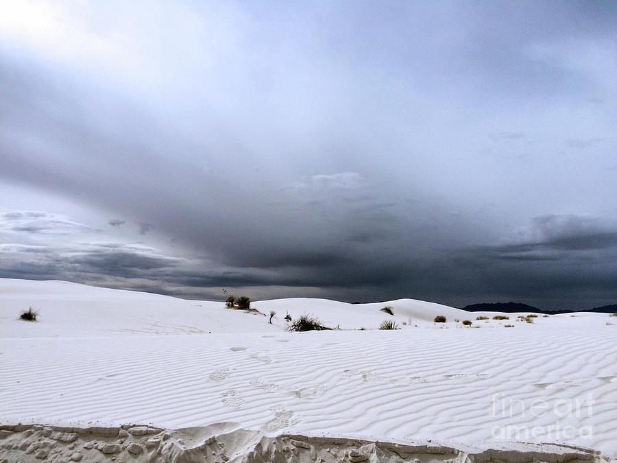 White Sands Storm by Leslie M Browning