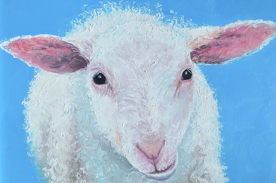 White sheep chewing cud by Jan Matson