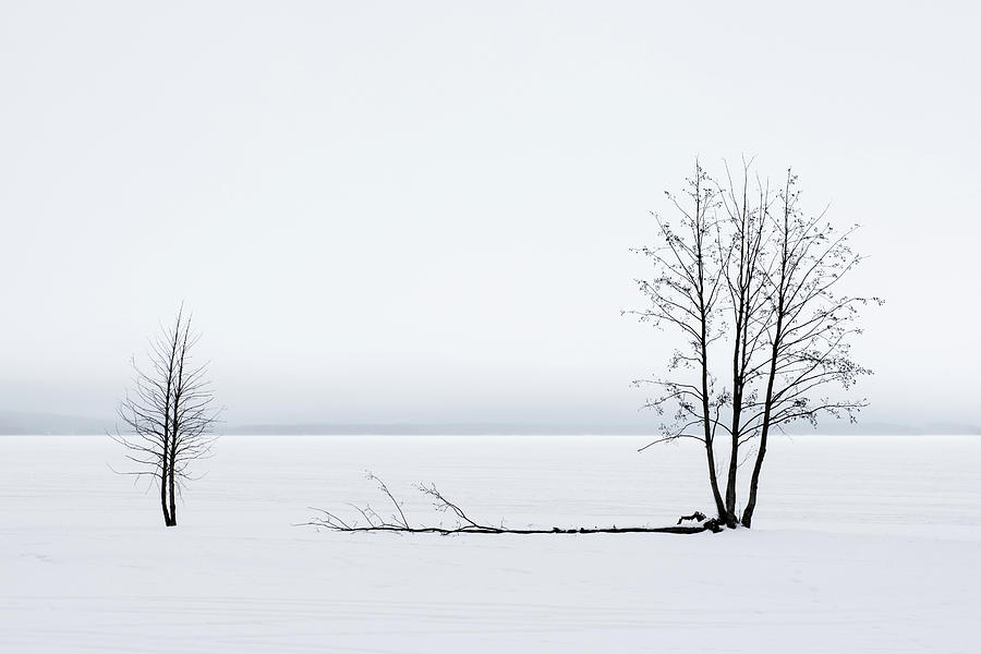 White Silence by George Grigoriadis