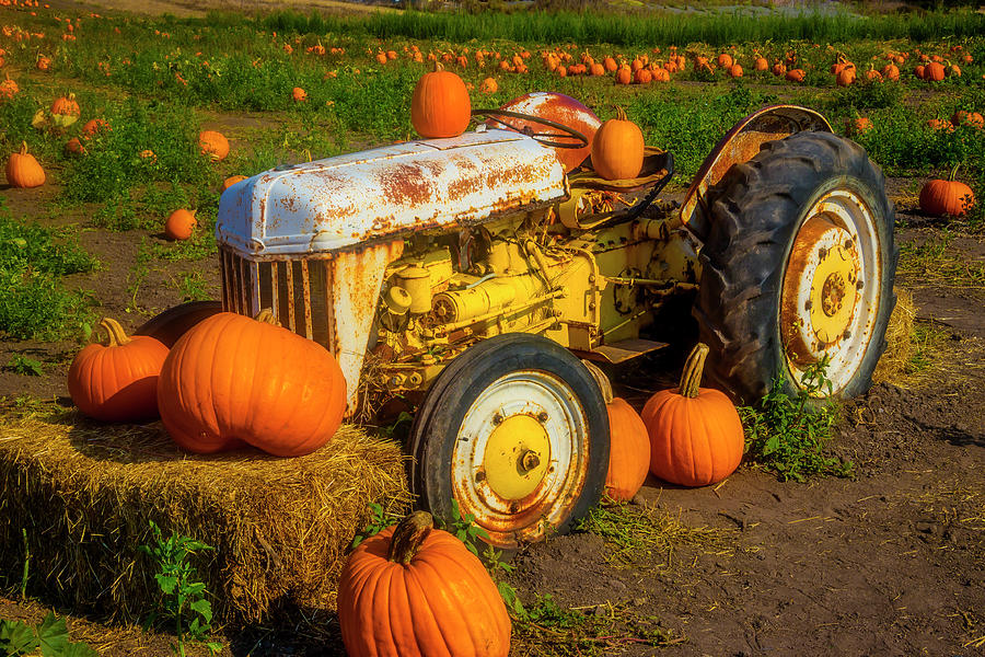 White Tractor With Pumpkins by Garry Gay