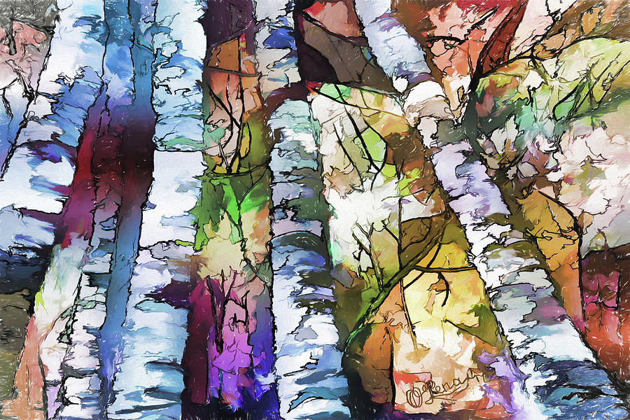 White Aspen And Birch Trees by OLena Art - Lena Owens