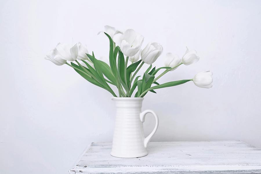 White Tulip Love by Kim Hojnacki