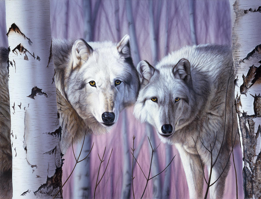 Wildlife Painting - White Wolves By Birch by Rusty Frentner