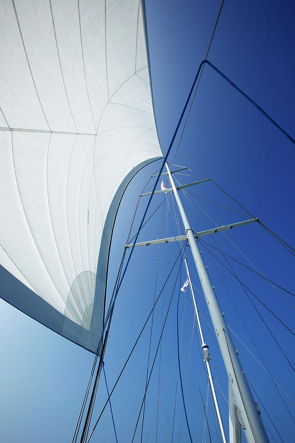 White Yacht Sail Against Blue Sky Photograph by John White Photos