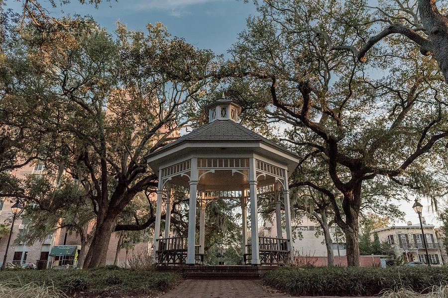 Whitefield Square Gazebo in Savannah GA by Doug Ash