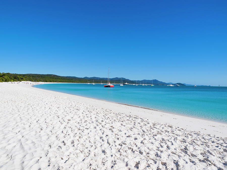 Whitehaven Beach On Whitsunday Island Photograph by Holgs