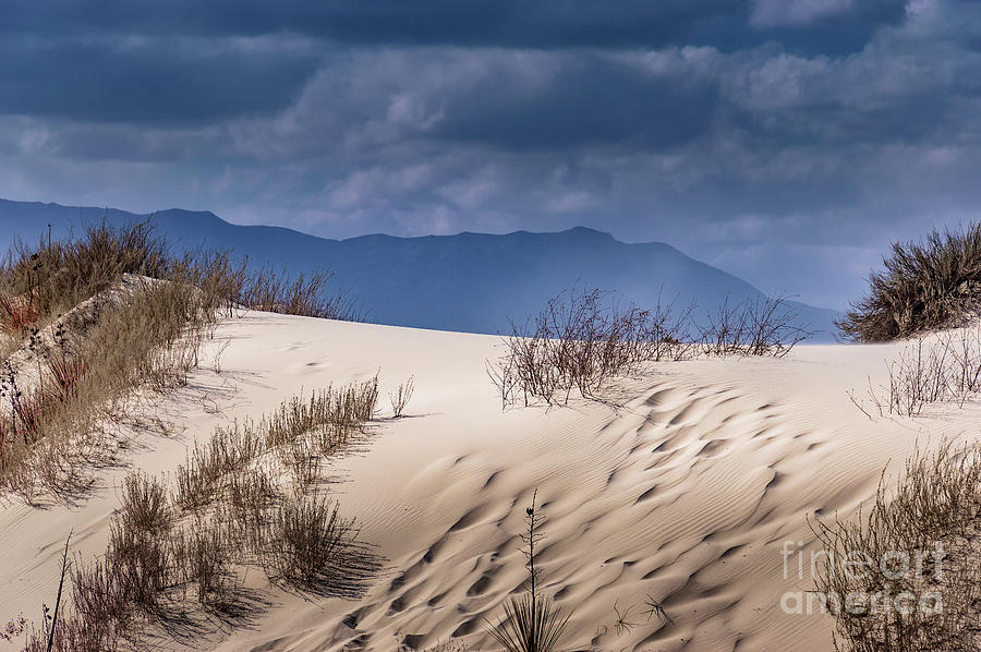Whites Sands National Monument #2 by Blake Webster