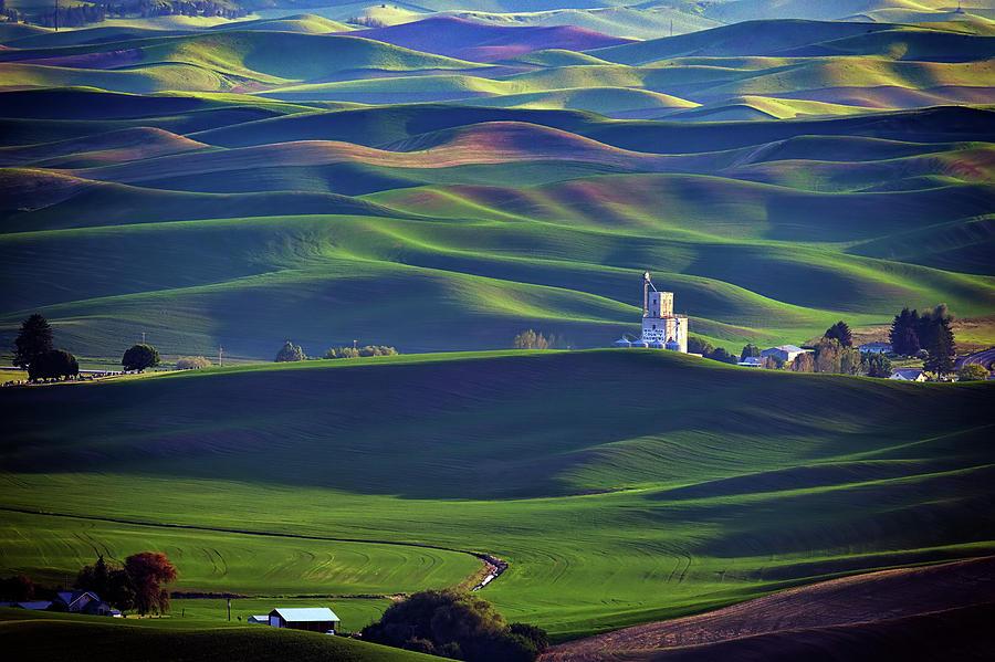 Whitman County Growers by Rick Berk