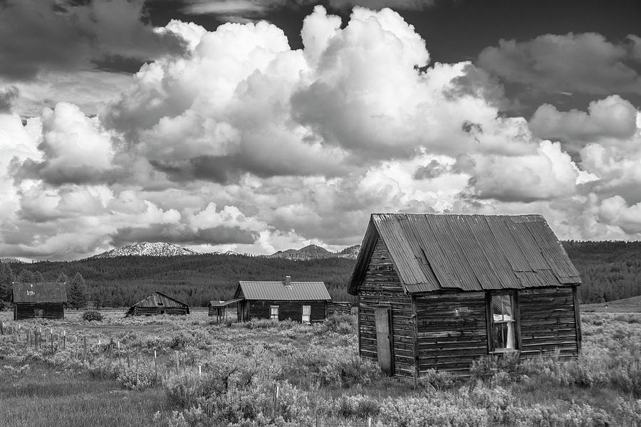Whitney - Ghost Town by Matthew Irvin