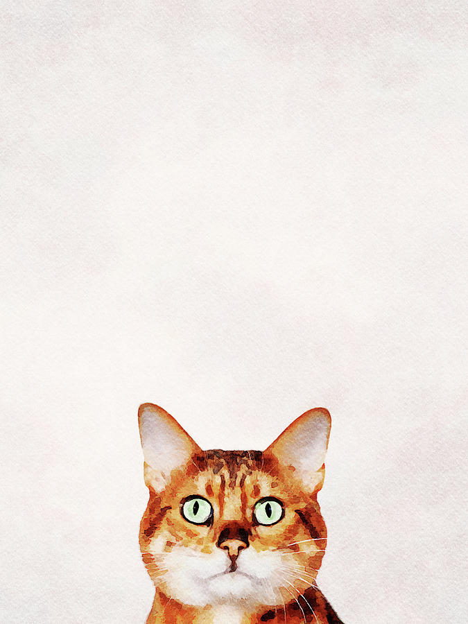 Who are you looking at? Digital water color painting of bengal c by Steven Heap
