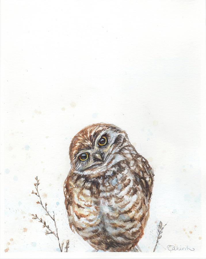 Little Owl Painting - Whos Asking? by Tahirih Goffic