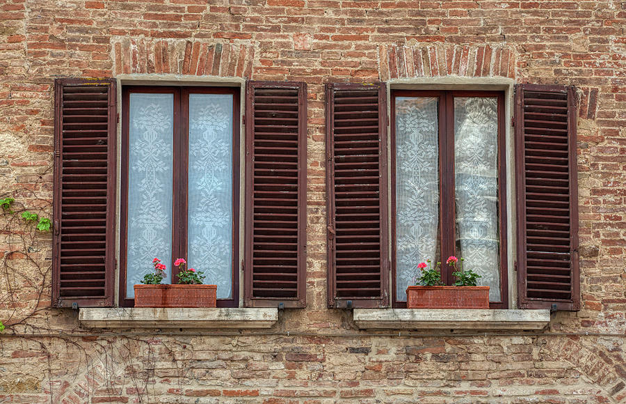 Window Flowers of Tuscany by David Letts