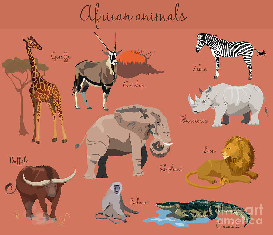 Crocodile Digital Art - Wild African Animals Set With Nature by Lemberg Vector Studio
