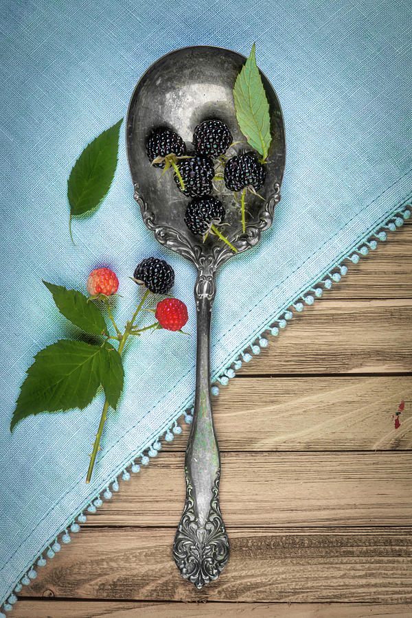 Wild Blackberries by Tom Mc Nemar