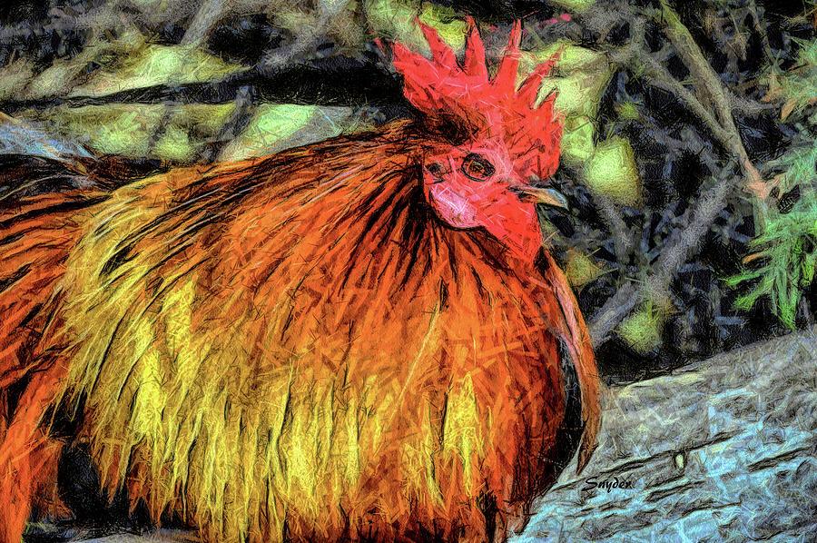 Wild Chicken of Arroyo Grande California by Floyd Snyder