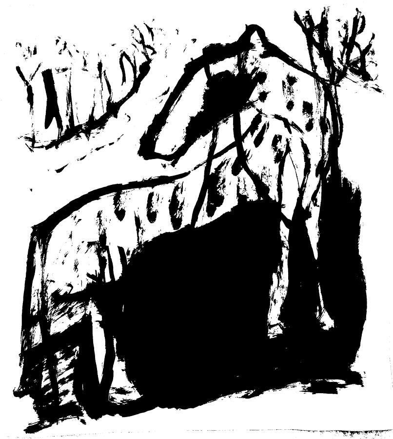 Wild dog by Artist Dot