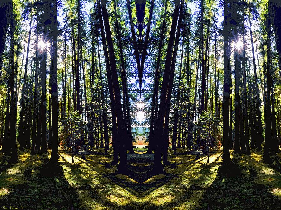 Wild Forest #1 by Ben Upham III