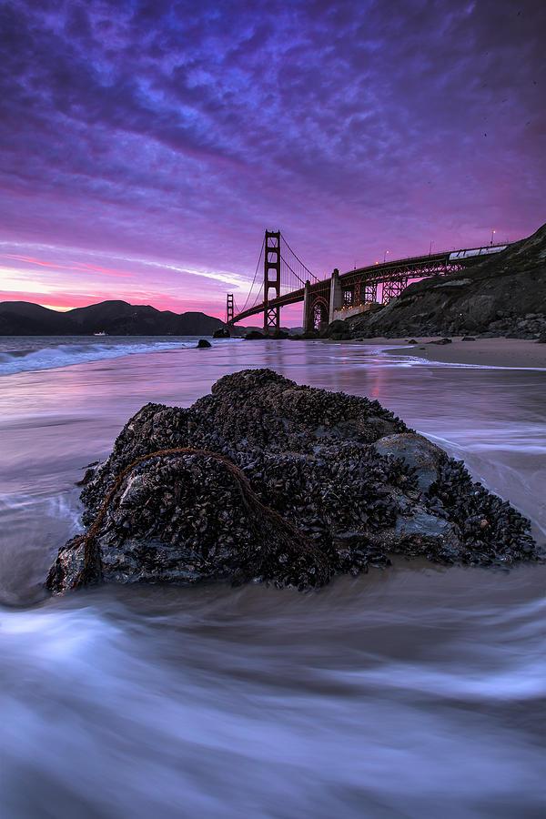 Wild Gate, Golden Gate Bridge Photograph by Vincent James