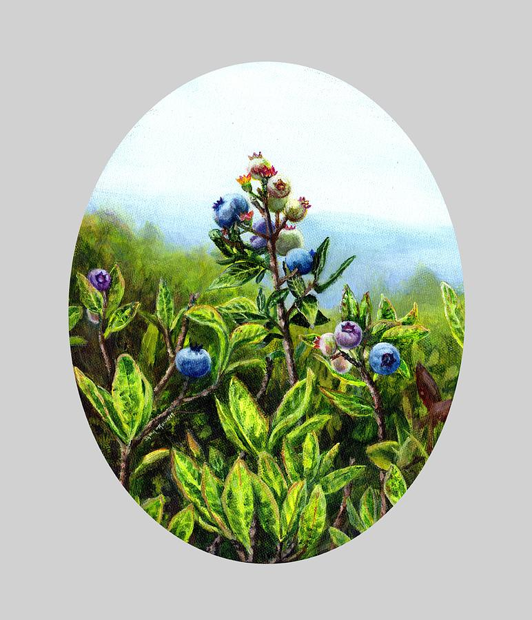 Wild Maine Blueberries  by Shana Rowe Jackson