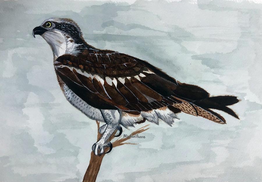Wild Osprey Painting