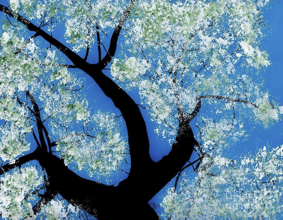 Wild Pear Tree In Bloom by D Hackett