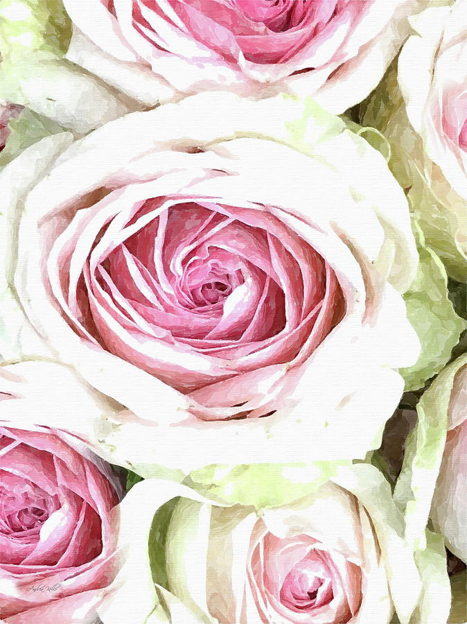 Pink Roses Photograph - Wild Pink Roses by Andrea Kollo