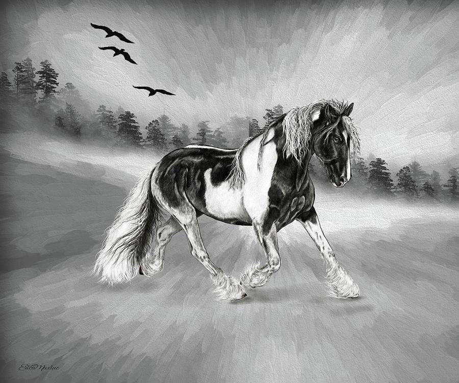 Wild Pinto - Digital Art by Ericamaxine Price