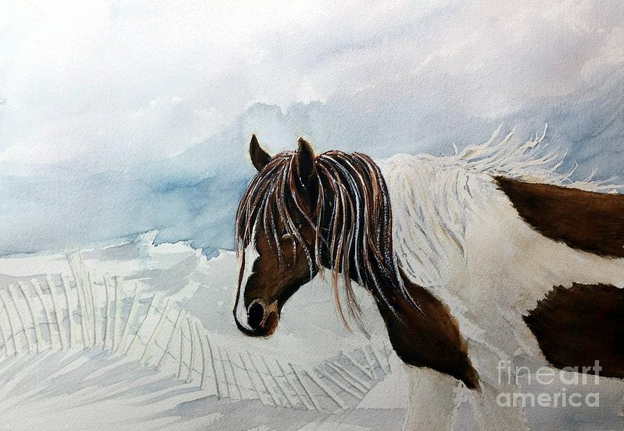 Wild Pony Sky - Assateague Wild Pony Paint by Janine Riley