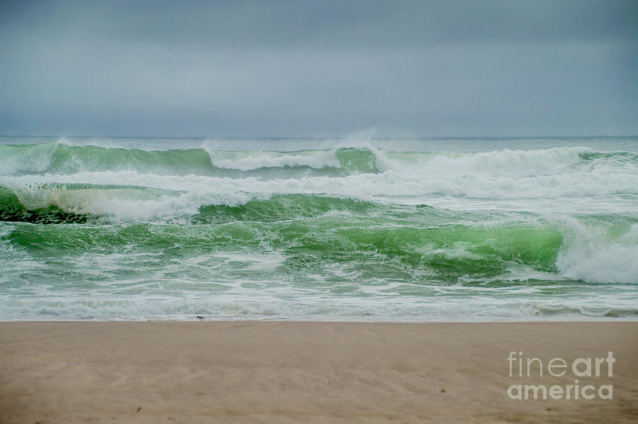 Wild Waves by Judy Hall-Folde